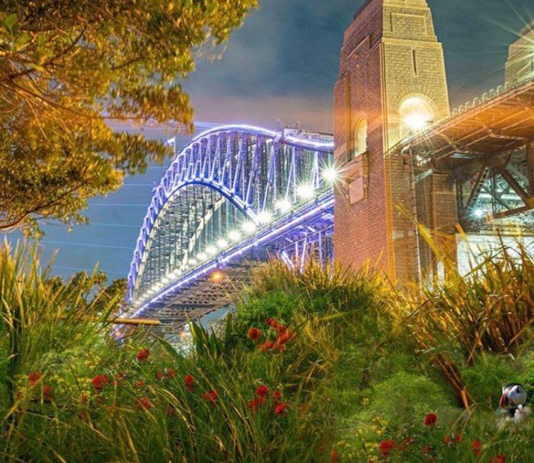 Robin Moon bridge