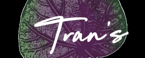 Trans-perilla-leaf-logo2