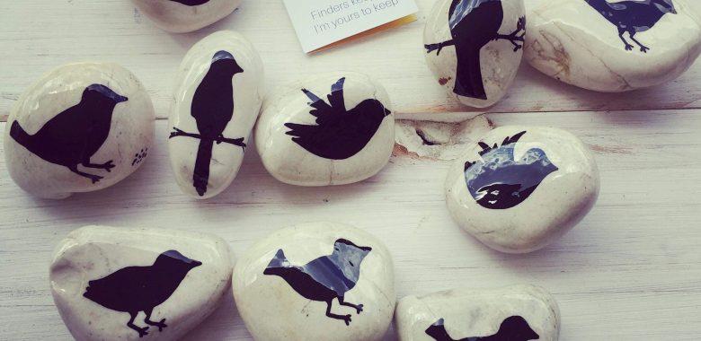 rock birds 1